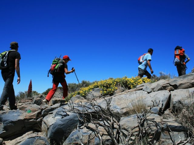 hiking-with-trekking-poles