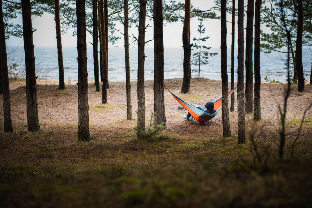 Tree hammock in the forest near to sea