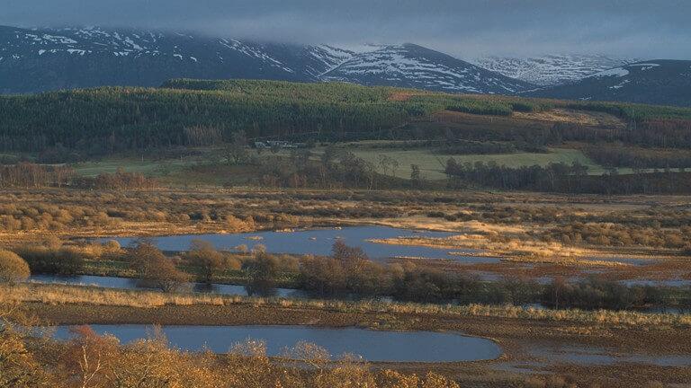Insh Marshes, Scottish Highlands