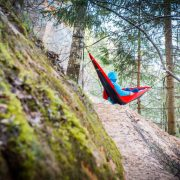 Red Independent Wolf Hammock in Forest