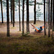Tree hammock in the forest near sea