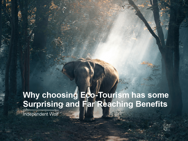Why choosing Eco-Tourism has some Surprising and Far Reaching Benefits