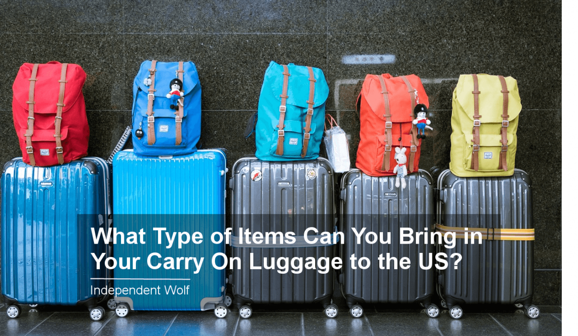 what type of items can you bring in your carry on luggage to the us