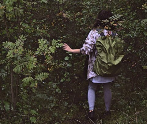 green backpack cover and forest