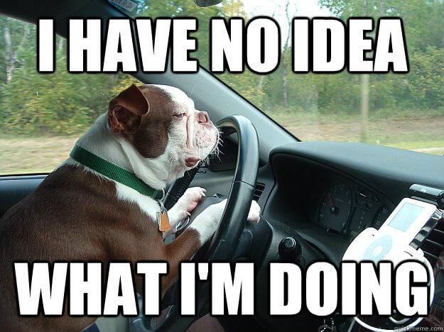 driving meme