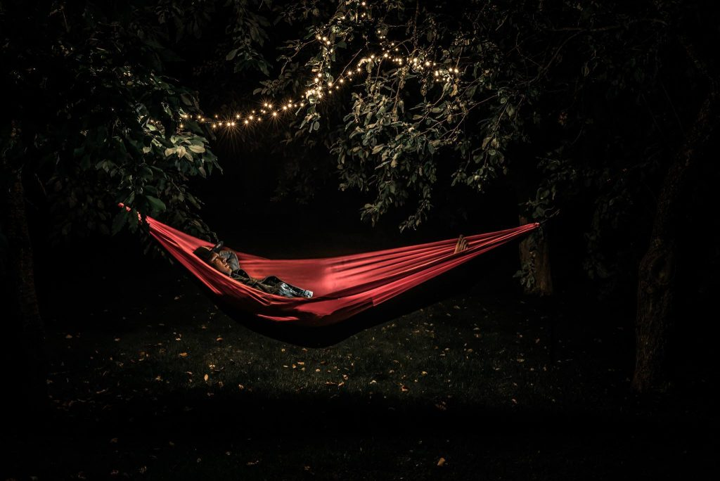 independent wolf hammock in dark forest