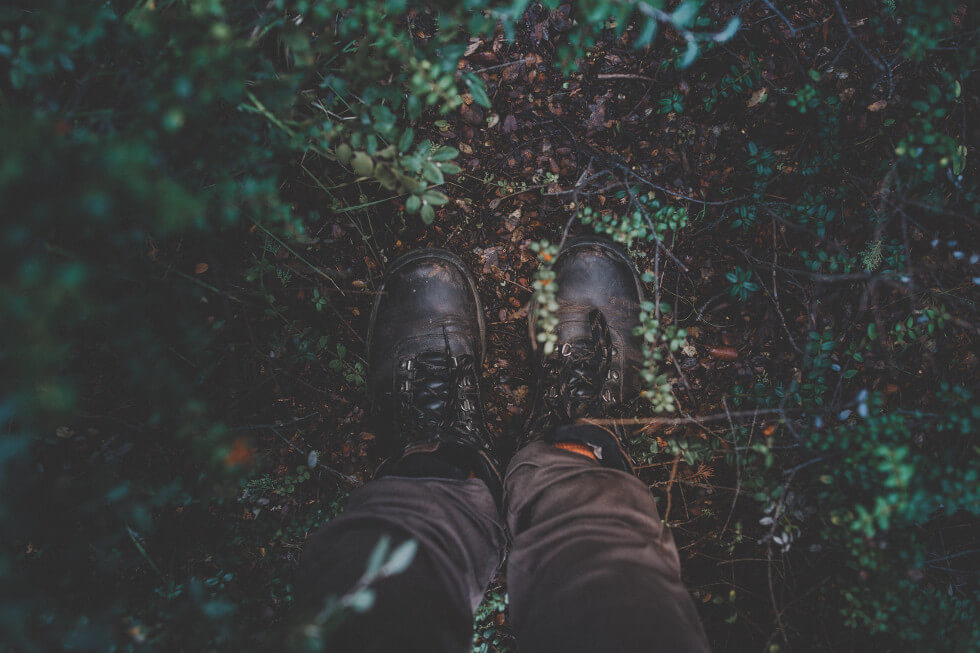 photography of black hiking boots surrounded by green leaves