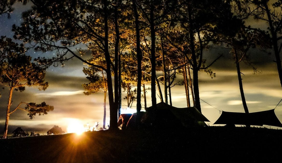 silhouette photo of outdoor camping