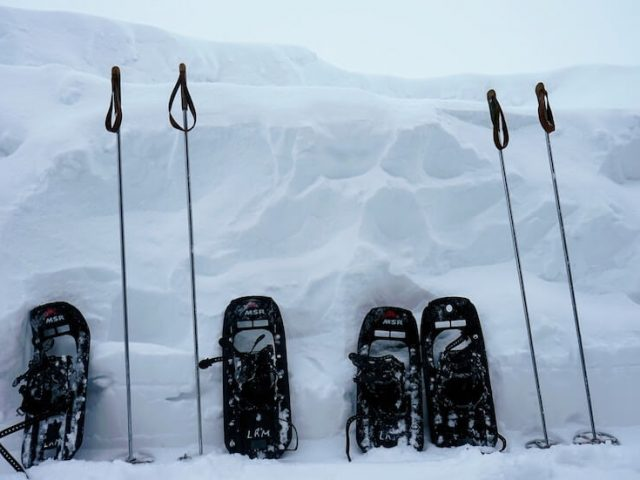 two pairs of snowshoes