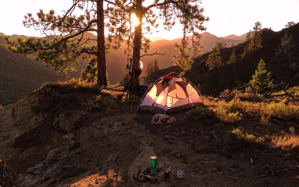 backpacking tent near tree on the mountains