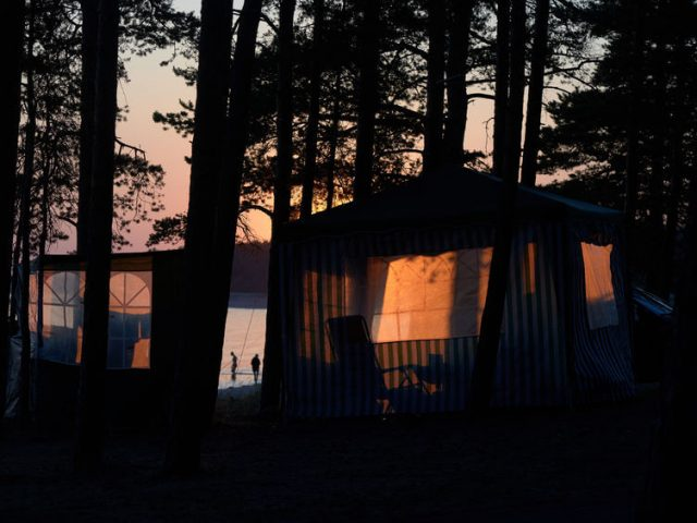 camping canopy tent in a pine forest